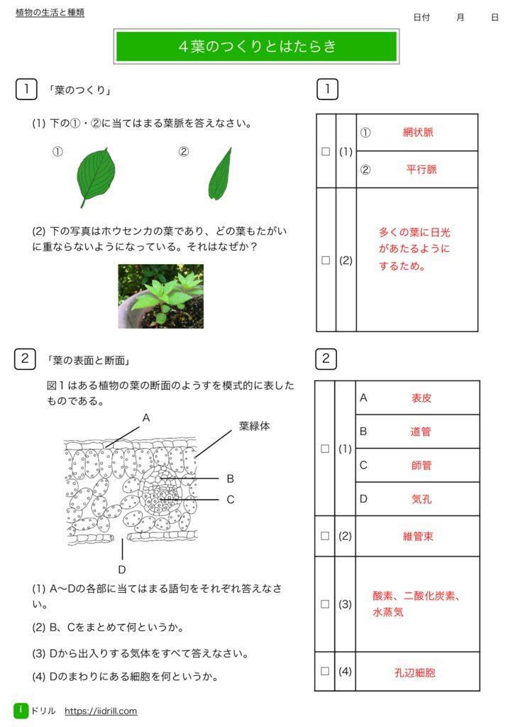 中1理科基礎練習問題k-10のサムネイル
