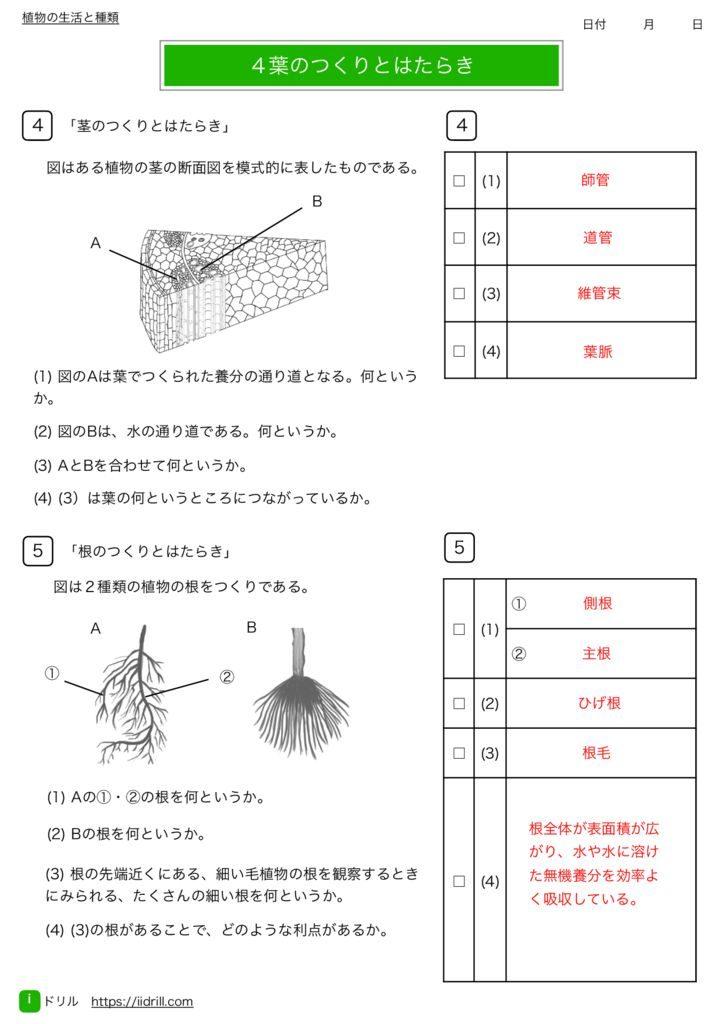 中1理科基礎練習問題k-12のサムネイル