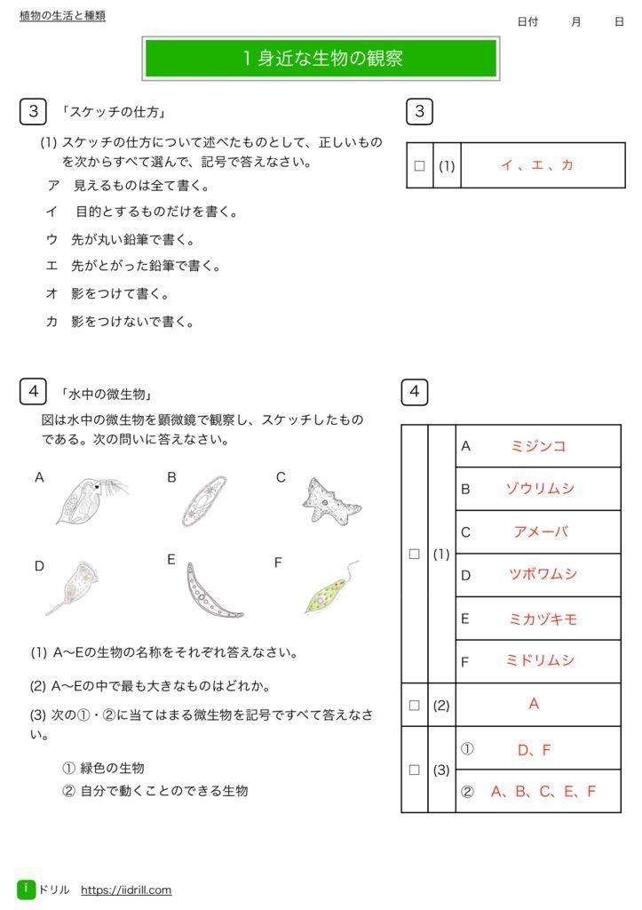 中1理科基礎練習問題k-2のサムネイル