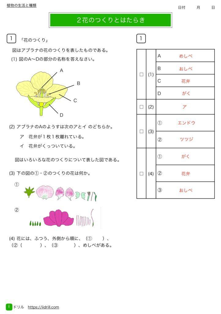 中1理科基礎練習問題k-5のサムネイル