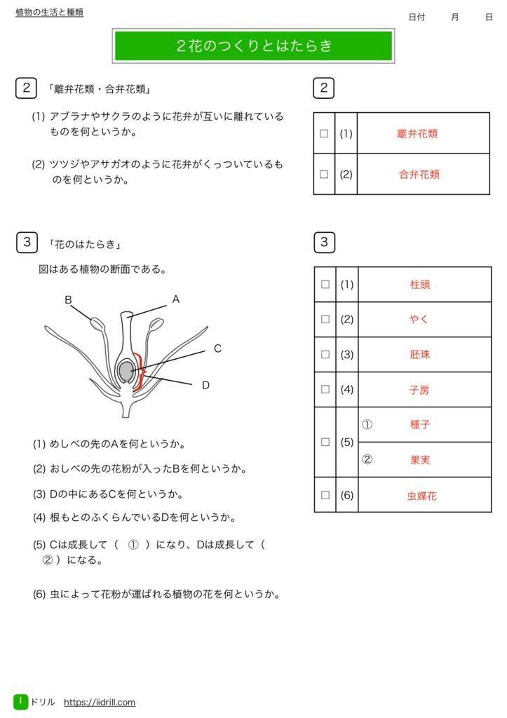 中1理科基礎練習問題k-6のサムネイル