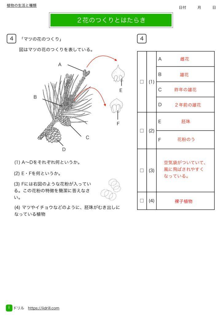 中1理科基礎練習問題k-7のサムネイル