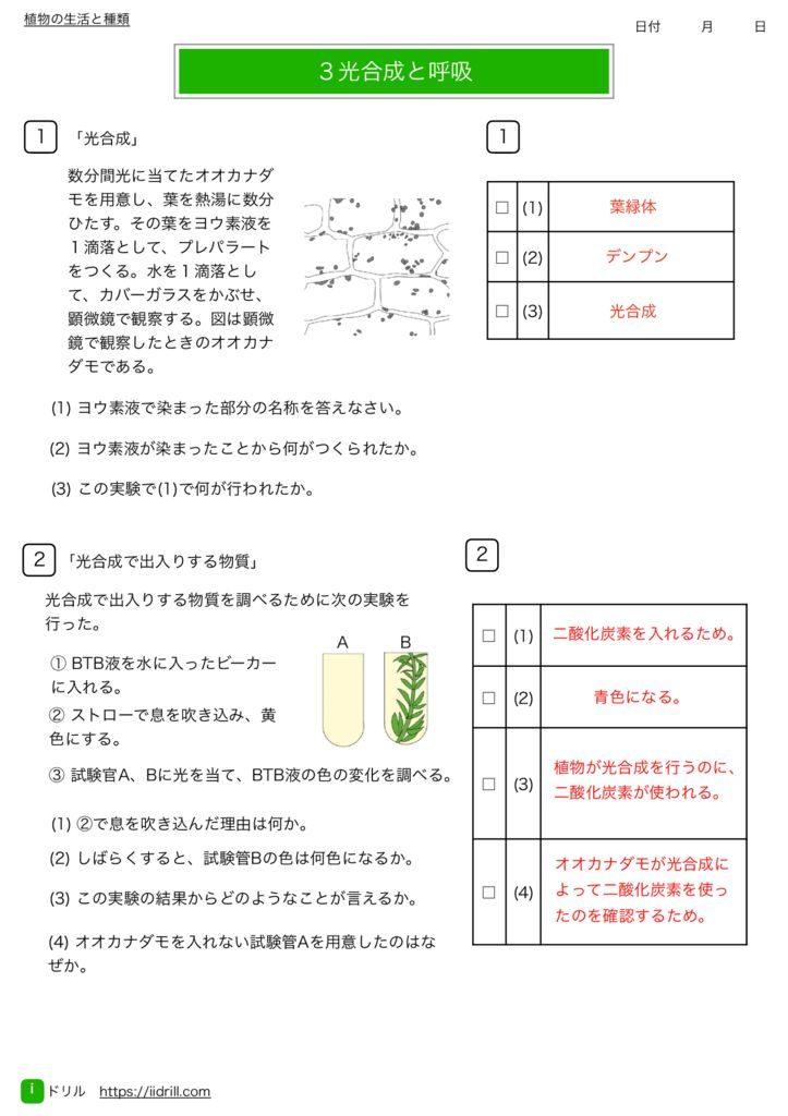 中1理科基礎練習問題k-8のサムネイル