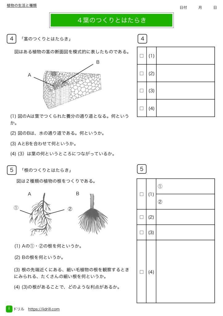 中1理科基礎練習問題m-12のサムネイル