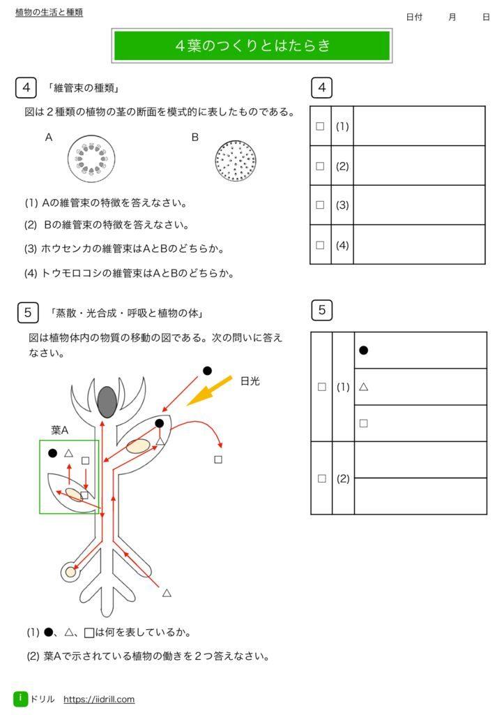 中1理科基礎練習問題m-13のサムネイル