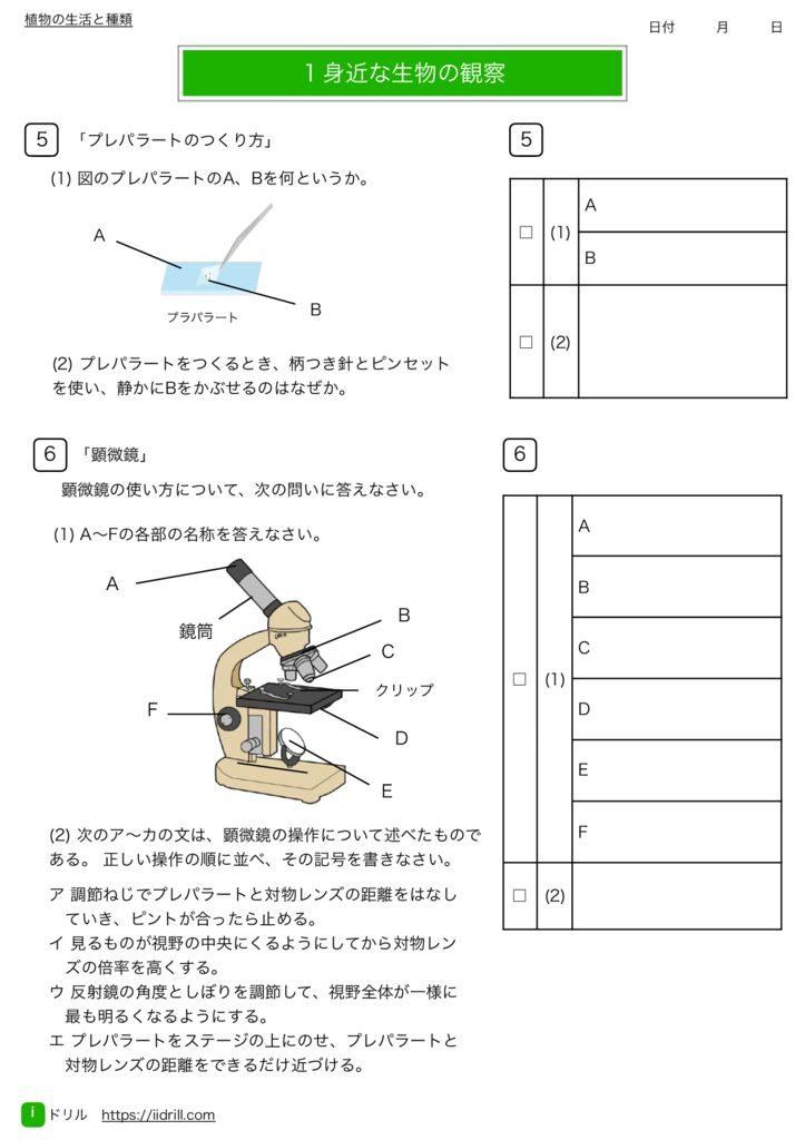 中1理科基礎練習問題m-3のサムネイル
