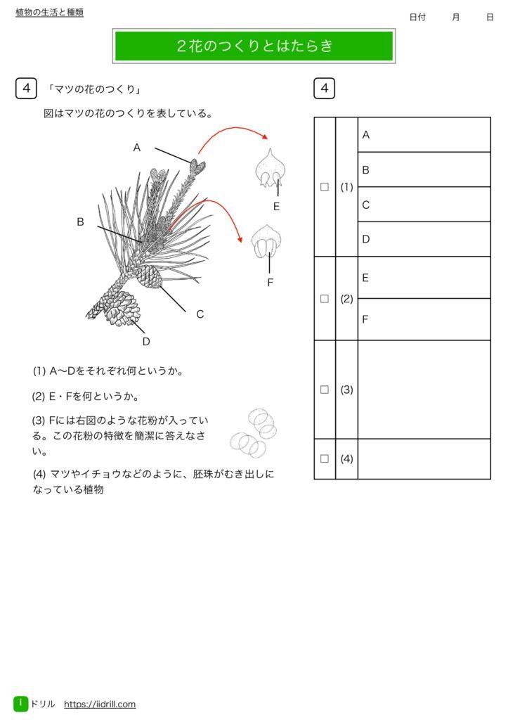 中1理科基礎練習問題m-7のサムネイル