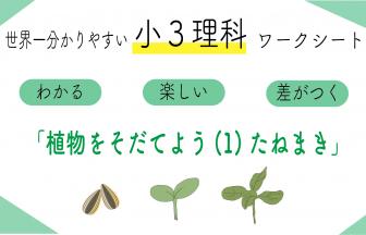 植物をそだてよう(1) たねまき