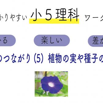 生命のつながり(5)植物の実や種子のでき方