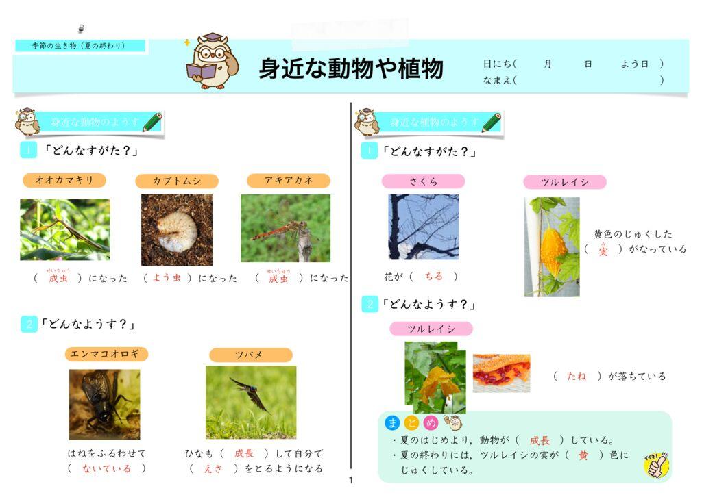7 季節と生き物(夏の終わり)k-1のサムネイル