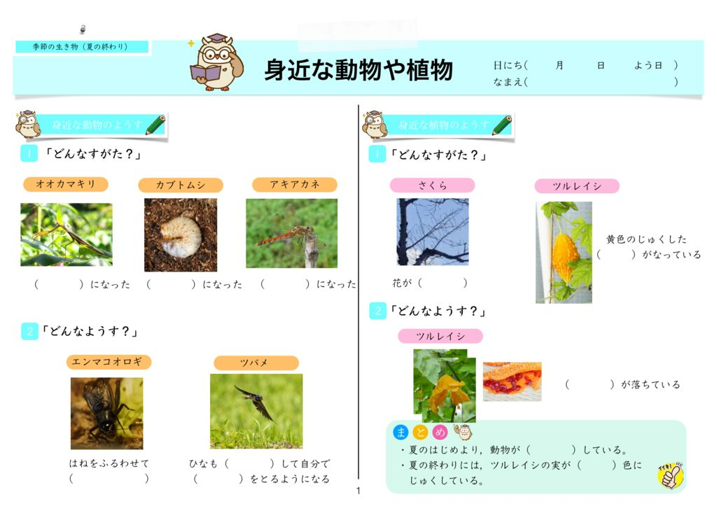 7 季節と生き物(夏の終わり)m-1のサムネイル