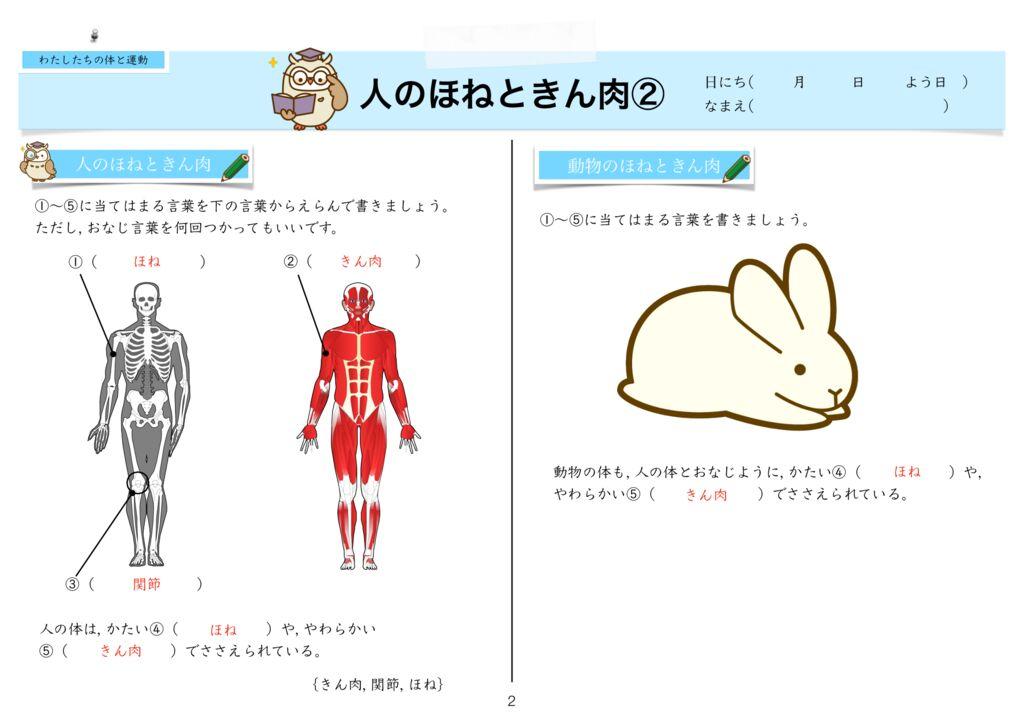 8わたしたちの体と運動k-2のサムネイル